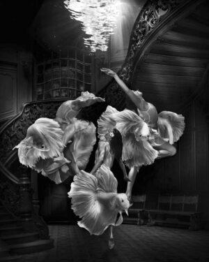 Marcel Van Luit – Free Desire 120×150