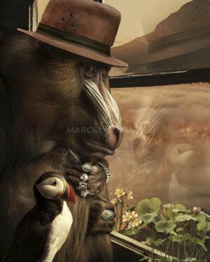 Marcel Van Luit – Traveller 120×150